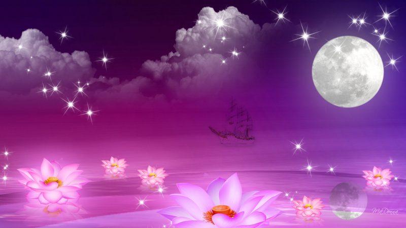 night-of-dreams-90303