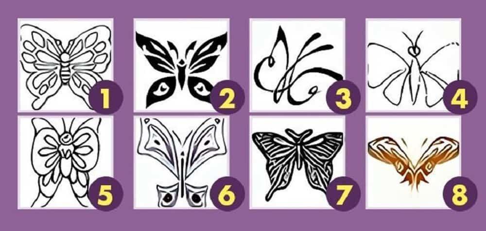 Elige una mariposa y descubre lo que tu subconsciente dice sobre ...